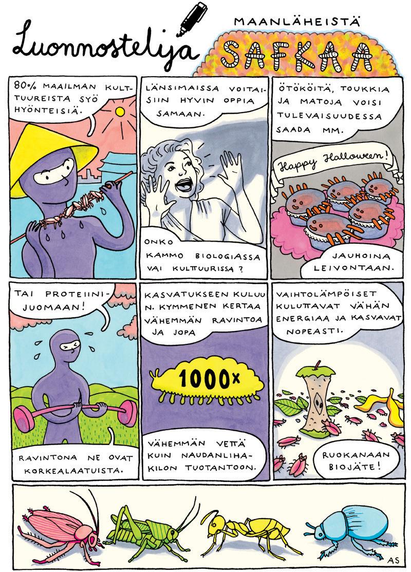 hyönteisten syöminen suomen luonnonsuojeluliitto aino sutinen hyönteiset sarjakuva