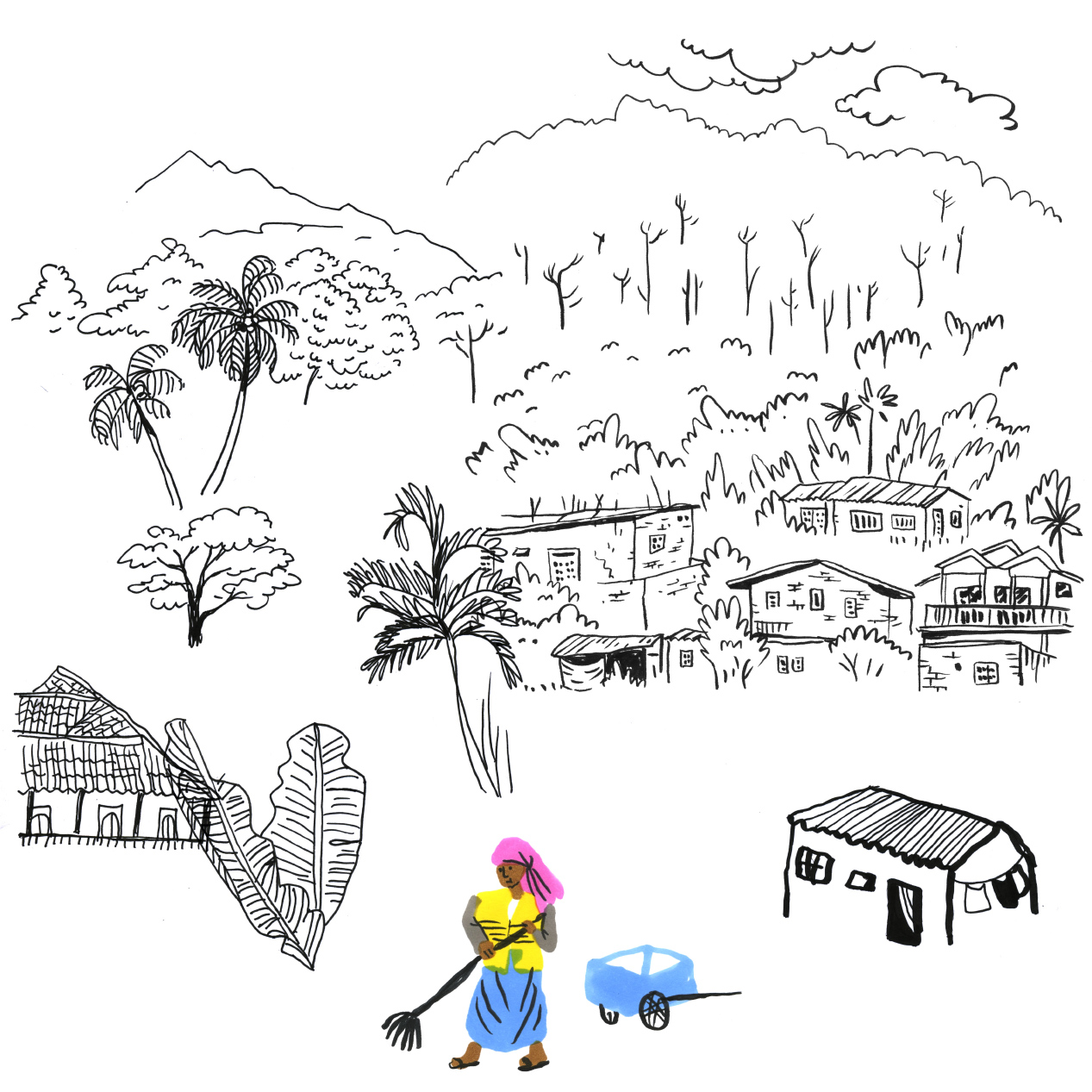 srilanka-treesweb