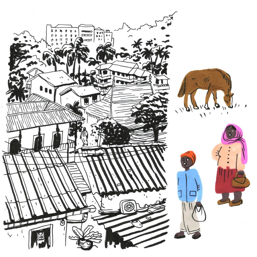 srilanka03web